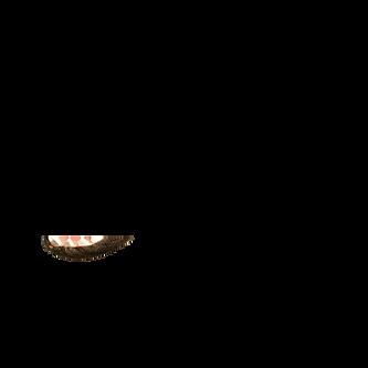 alligator mouth.png