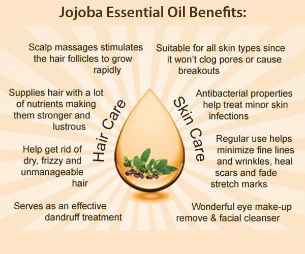 Among the many benefits of Jojoba, it's antibacterial properties that help keep your beard clean.