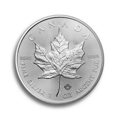 Maple Leaf 1 oz Silbermünze