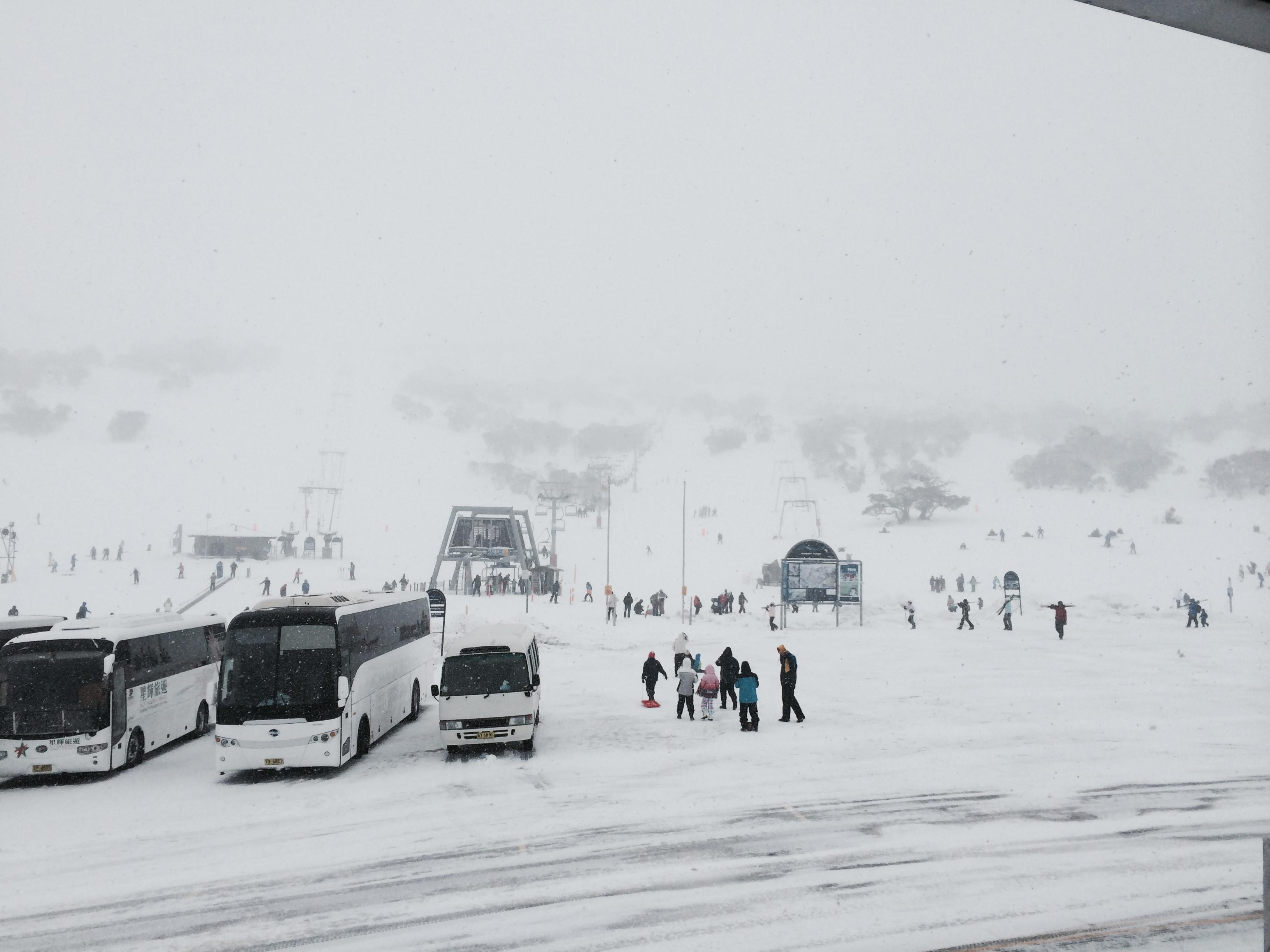 Smiggins in a Blizzard