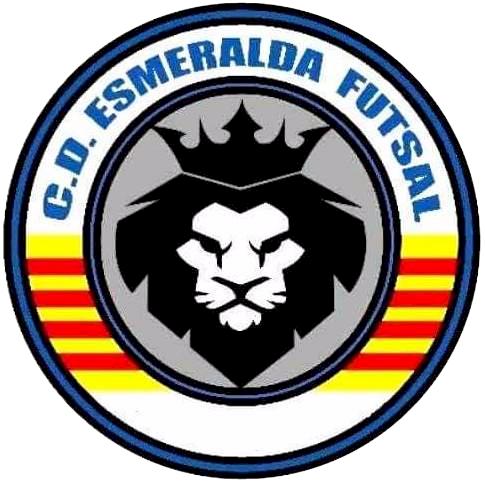 Logo FUTSAL.png