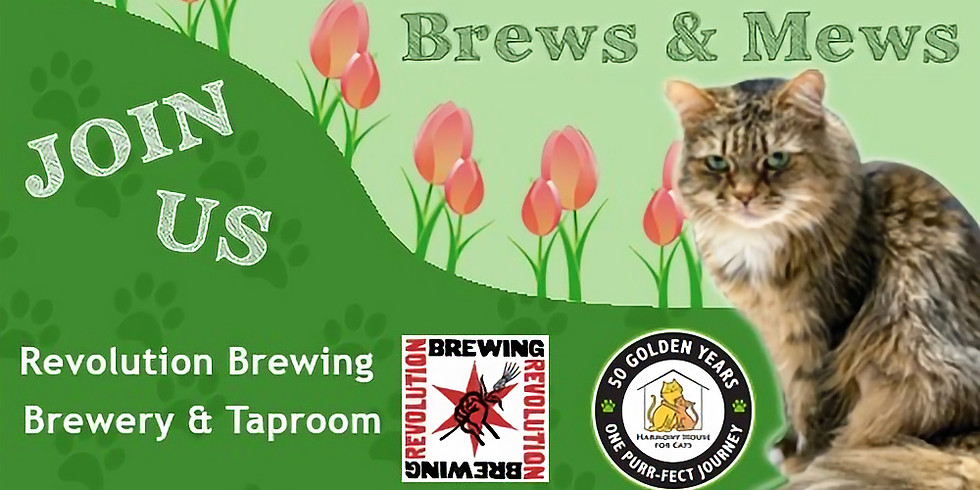 Brews & Mews Fundraiser for Harmony House For Cats