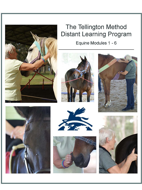 Tellington Method Distant Learning Program