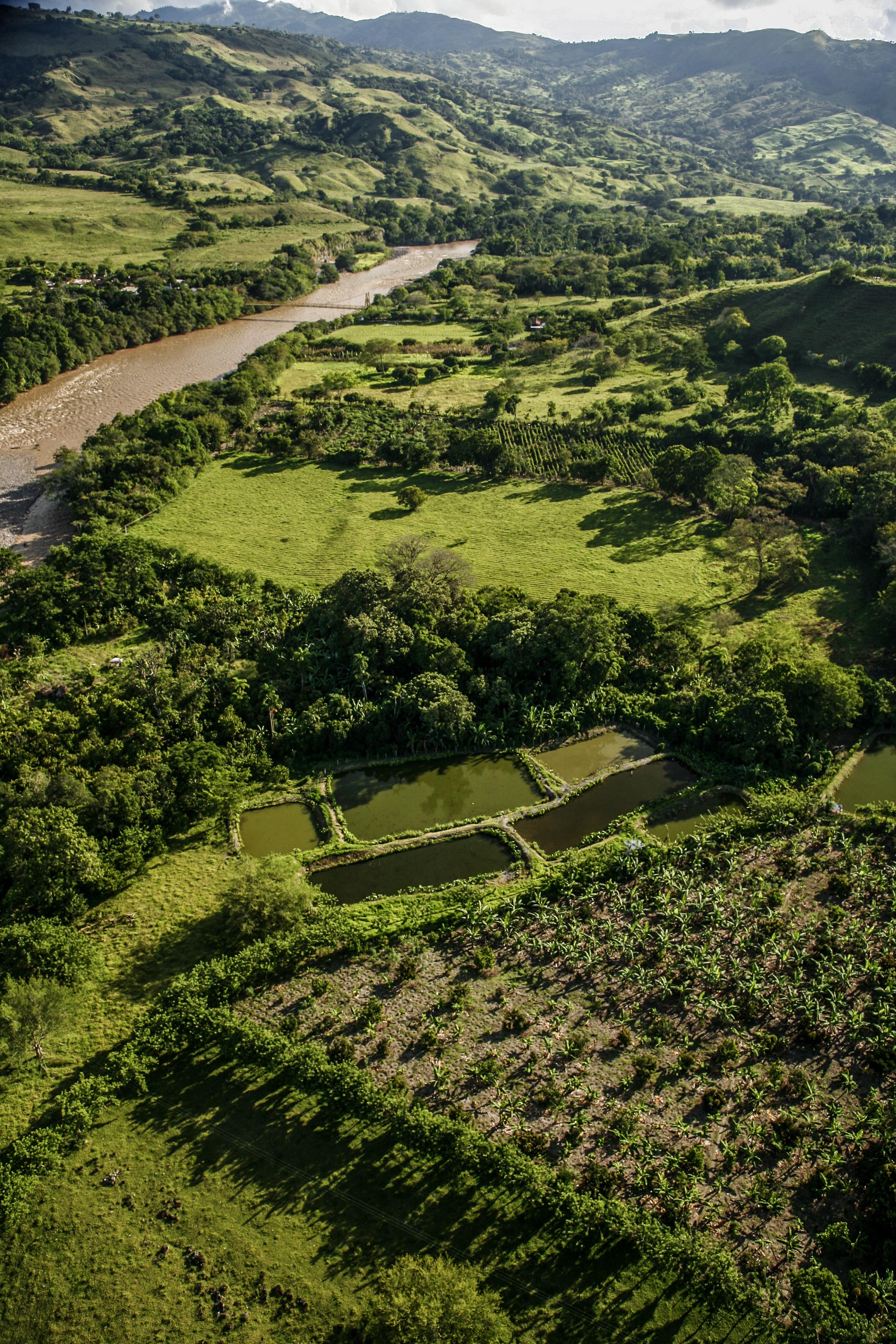 Procesos de deforestación