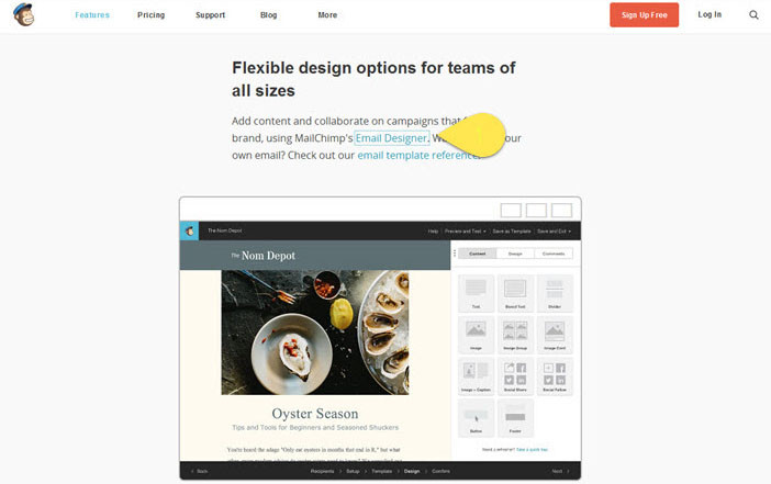 MailChimp webpage showing how the visual focus is displayed when using a keyboard
