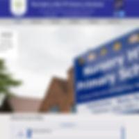 NHP Home Page.jpg