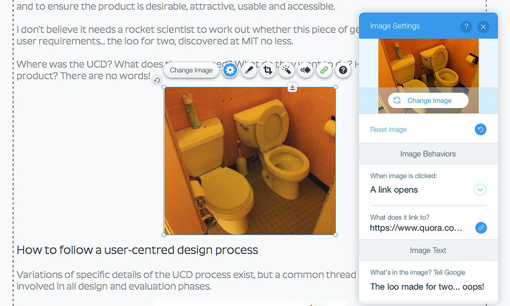 Alt text label in WIX to help users understand context and content of images in webpages