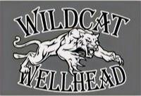 Wildcat Wellhead