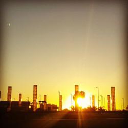 Sunrise @ LAX.