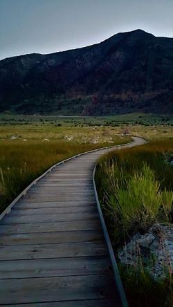 Wyeth Path.