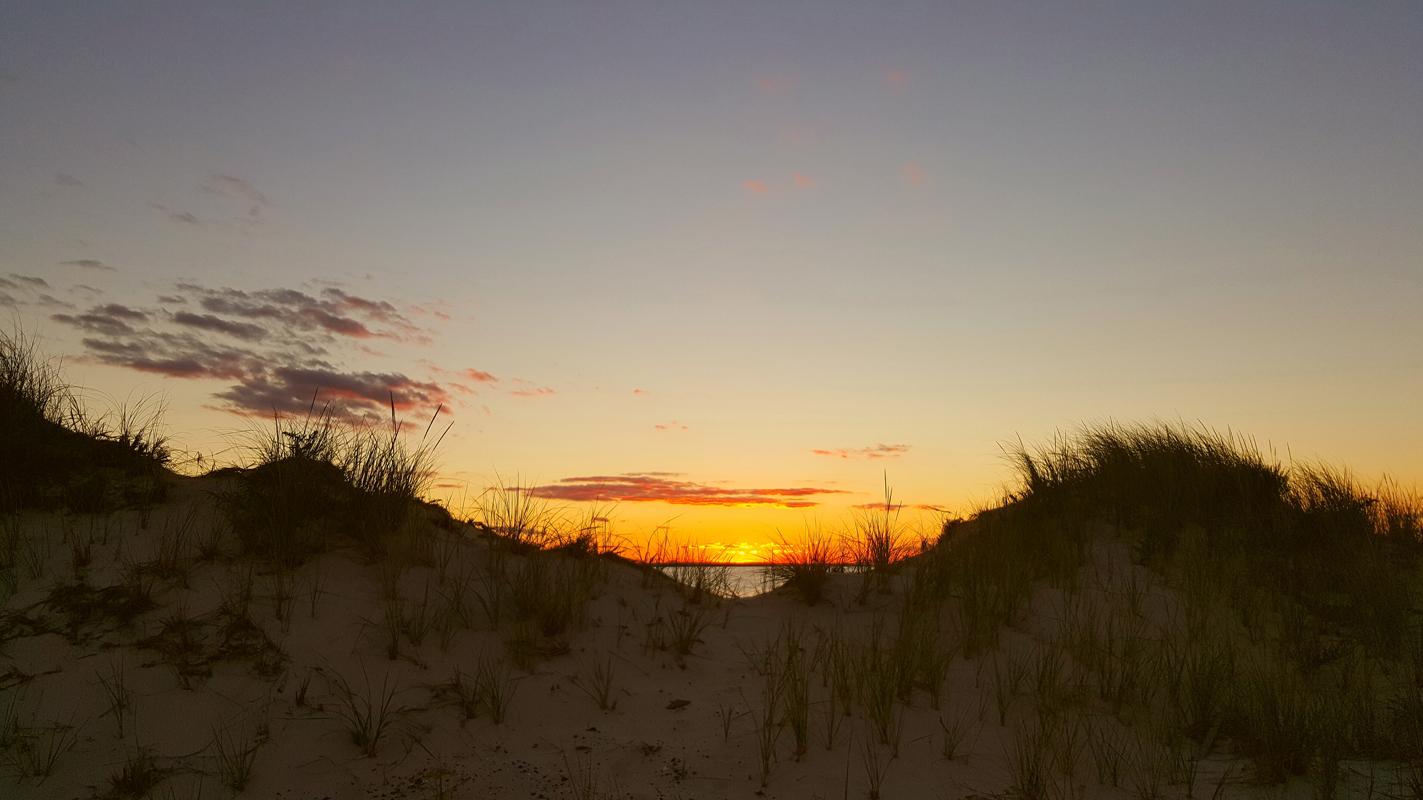Dunes in Dennis