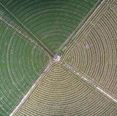 שדה עגול.jpg