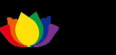 apqffa logo2.png