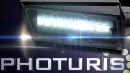 Photuris