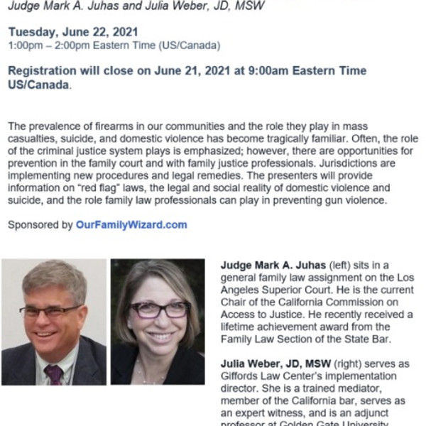 The Role of Family Law Professionals in Preventing Gun Violence