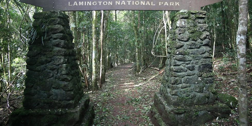 Lamington Classic Trail Run