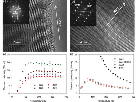 Thermal Conductivity of Zinc Blende and Wurtzite CdSe Nanostructures