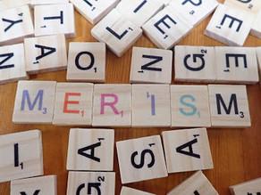 Speaking better English - Merisms