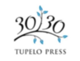 TP3030-logo-360.jpg