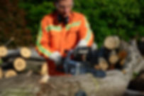 YF120vRX Chainsaw Lumberjack Photo-origi