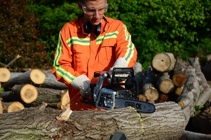 YF120vRX Chainsaw Lumberjack Photo-origi