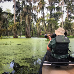 Guided Photography Excursions
