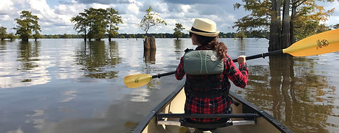 Canoe rentals in Louisiana's Atcafalaya Basin Swamp