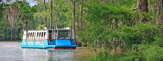 Atchafalaya Basin Louisiana swamp tour