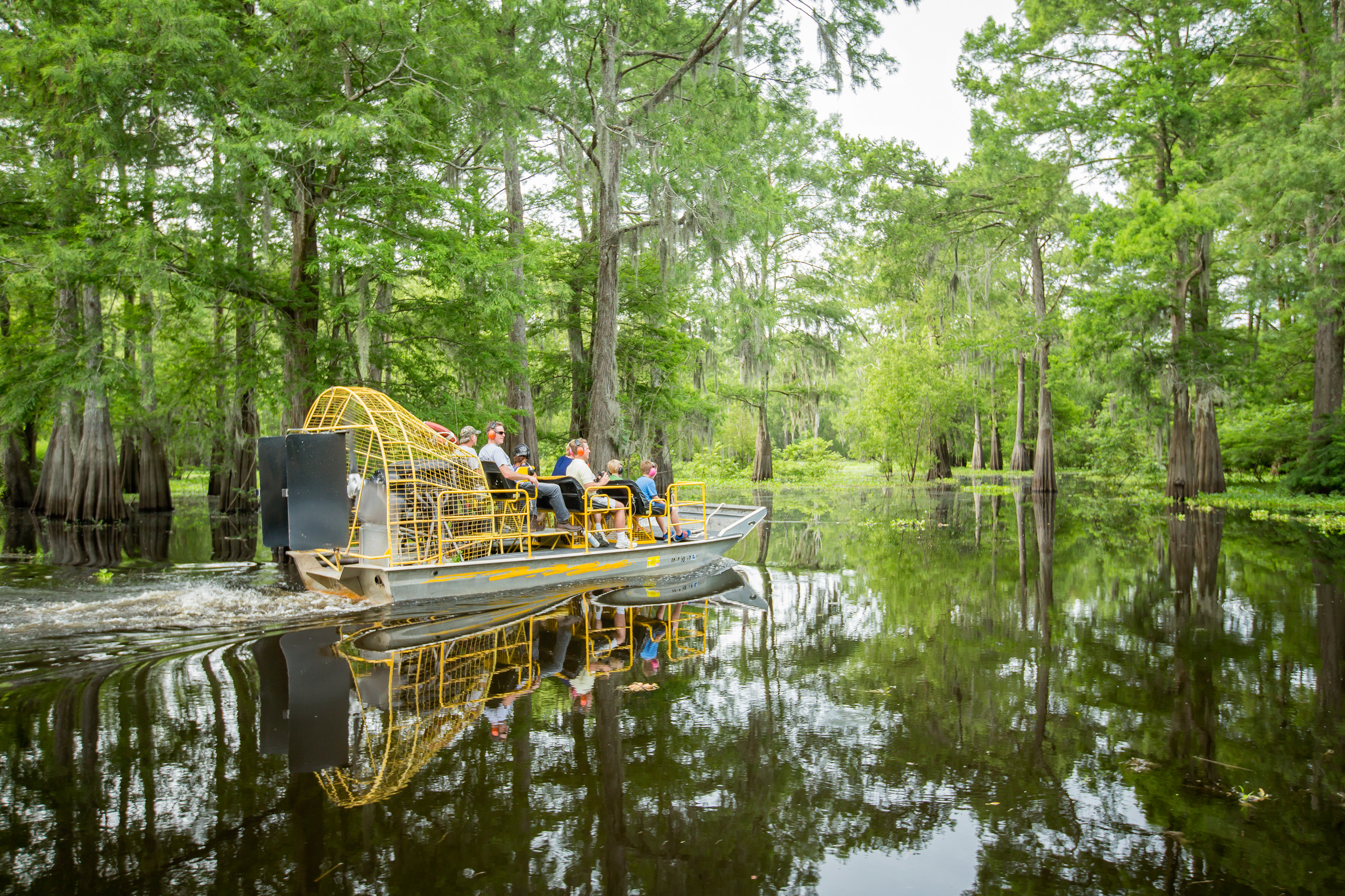 Mcgee S Louisiana Swamp Amp Airboat Tours