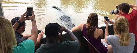 Louisiana swamp tour, alligator, Atchafalaya Basin