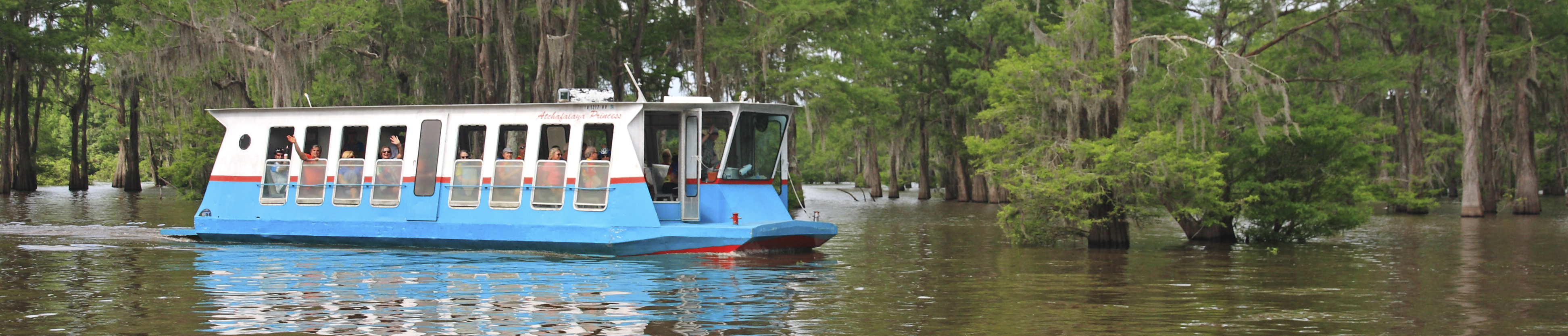 McGee's Louisiana Swamp & Airboat Tours