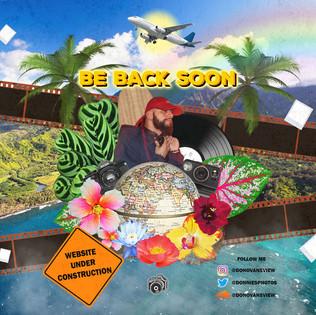 DONOVAN collage for Website
