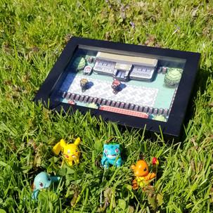 Pokemon Shadow box
