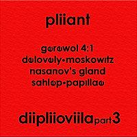diipliioviila pt 3 tracks.jpg