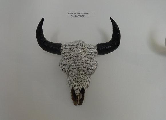 Crâne de bison écrit noir