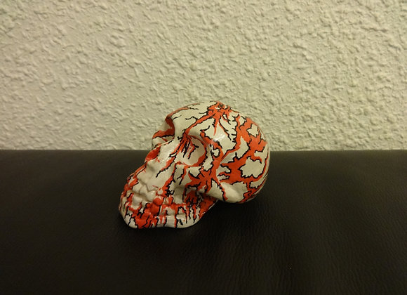 Crâne céramique blanc sanglant