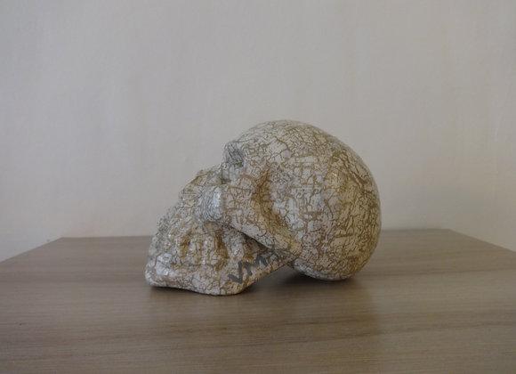 Crâne céramique blanc et doré