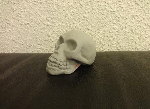Crâne céramique Gris clair