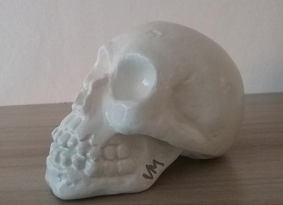 crâne céramique uni blanc