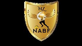 лого readi NABF.png