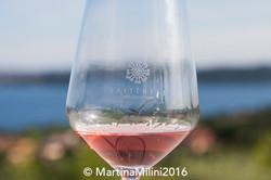 17 Italia in Rosa 2016 ©Milini