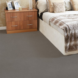 Stainfree Arena Carpet