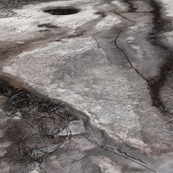 VisTraces_(AU_Ku-ring-gai_Aboriginal-engr-goana-b_9295_2012_Feb_27_c0.6k)_edited