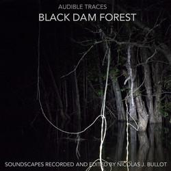 Bullot_2017_03_23_AudTraces_Black-dam-forest_A-cover-Vers1_c3k