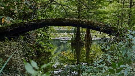 Schlosspark Dennenlohe_010