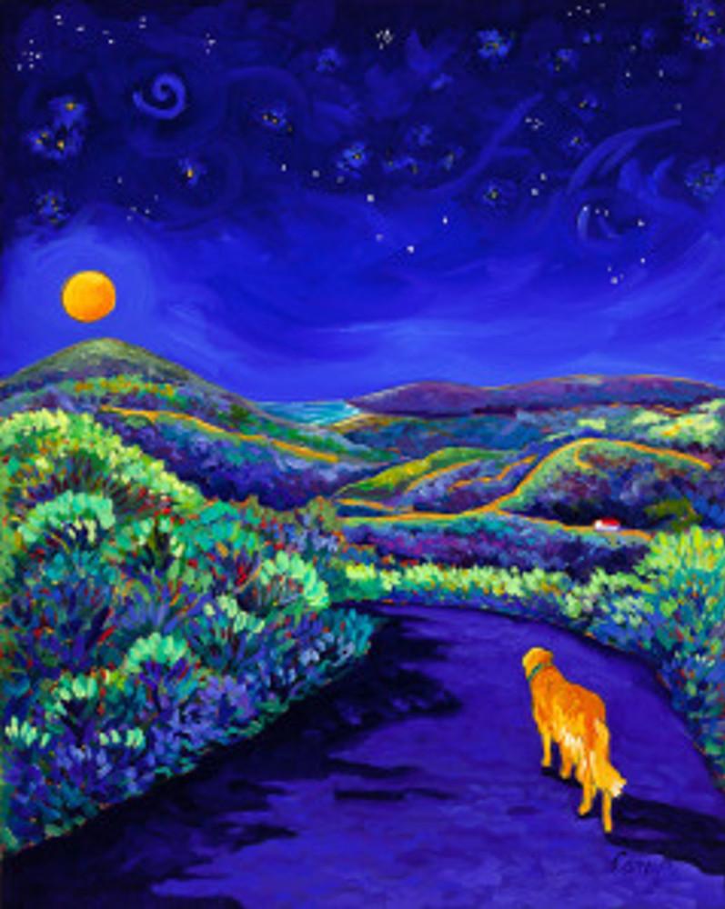 Golden Moon Walk 16 x 20 oil by Cathy Carey ©2014