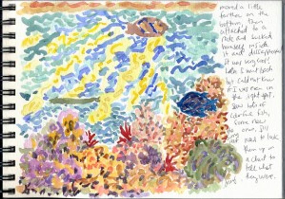 Maui Dec 2008 p24