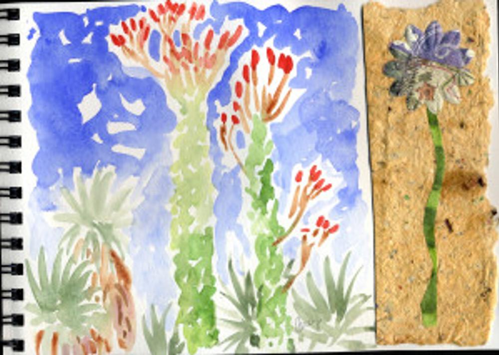 Huntington Garden 2009 - Succulent Sky p40