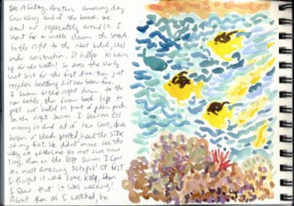 Maui Dec 2008 p23