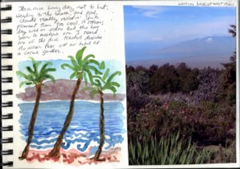 Maui Dec 2008 p10